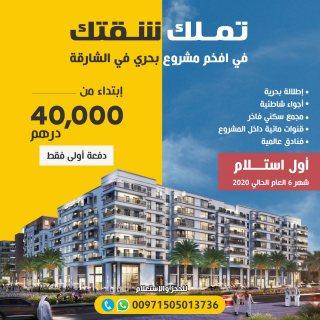جزيرة مريم مشروعاً رئيساً صمم ليكون مدينة مصغرة