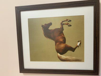 الجوادُ الأنيق الحصان العتيق