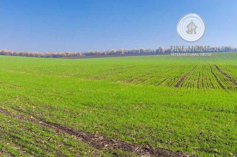 مزرعة 360 ألف قدم مربع في مزارع الرماح، على طريق العين