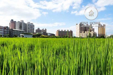 للبيع   مزرعة بمساحة كبيرة   منطقة الختم أبوظبي