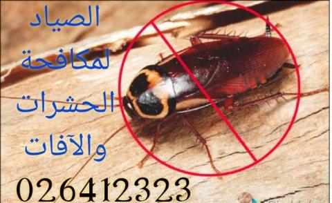 الصياد لمكافحة الحشرات / لحياة تخلو من الحشرات المزعجة والضارة وبيئة نظيفة/