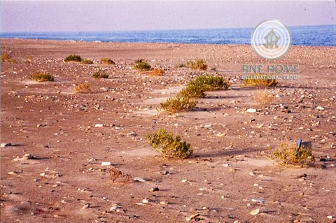 للبيع   أرض تجارية على زاوية و شارعين   مدينة خليفة   أبوظبي