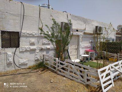 بيت شعبي في الجيمي على الشارع العام