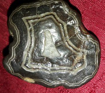 حجر  منقوش نادر