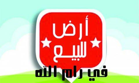ارض وسط مدينة رام الله للبيع