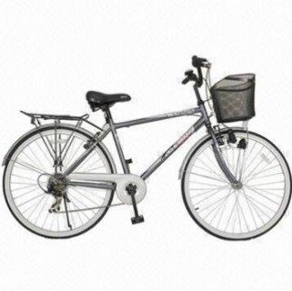 مدينة دراجة