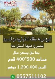 للبيع مزرعة منطقة الختم قريبة من المسجد مصرح عليها استراحة