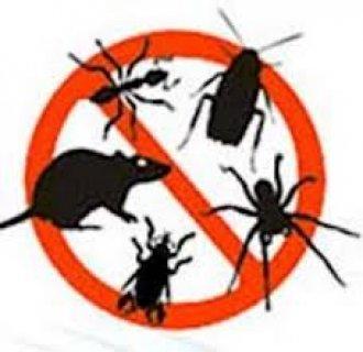 النقاء للخدمات البيئية خدمات التظيف ومكافحة الحشرات