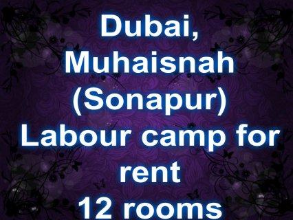 Sonapur-Muhaisnah,labour camp for rent / سنابور-محيصنة , سكن عما