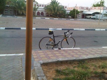 دراجه سباق نوع GIANT وزن الريشه