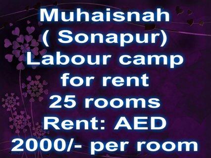 Labour camp for rent, Sonapur / سكن عمال للإيجار, سنابور