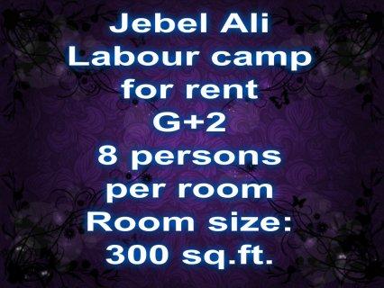 جبل علي, سكن عمال للإيجار / Jebel Ali, labour accommodation for
