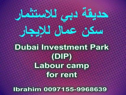 DIP, labour camp for rent /  حديقة دبي للاستثمار, سكن عمال
