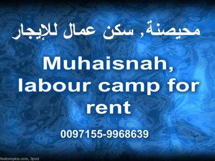 محيصنة, سكن عمال للإيجار / Muhaisnah, labour camp for rent