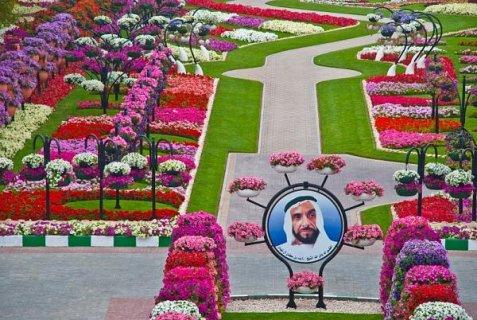 تايملس دبي للسياحة والسفر