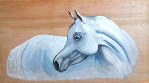 لوحة زيتية لوجه حصان عربري