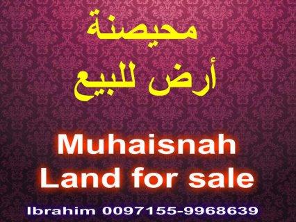 Muhaisnah, land for sale / محيصنة, أرض للبيع