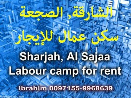 Al Sajaa, labour camp for rent / الصجعة, سكن عمال للإيجار
