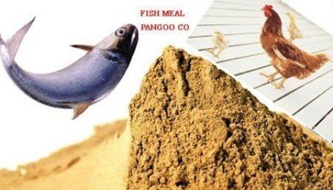 مسحوق سمك للمزارع السمكية وأضافة أعلاف المزارع الحيوانية
