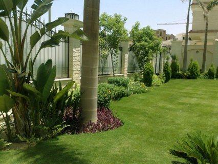 شركه شهزاده لتنسيق الحدائق 05009007276