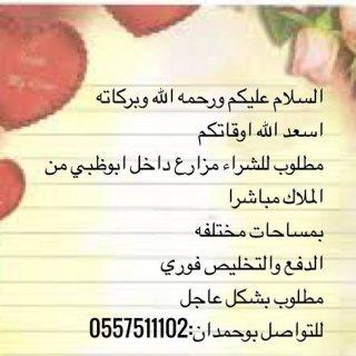 مطلوب مزارع للشراء داخل ابوظبي من الملاك مباشرا