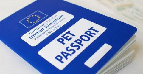 جواز سفر الحيوانات الأليفة بريكسيت