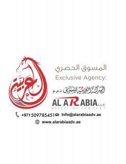 (الياسمين) اراضي تجارية للبيع بتصريح ارضي +1 طابق مقابل رحمانية الشارقة