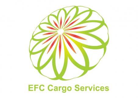 شركة شحن من دبي الى كردستان العراق 00971508678110