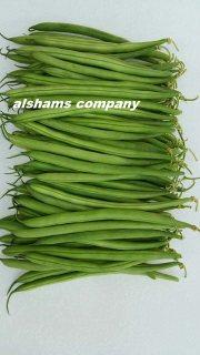 فاصوليا خضراء مصريه طازجة بجودة عالية