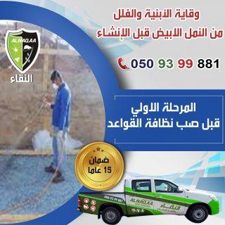 كيفية القضاء على حشرة الرمة (النمل الابيض) | دبي - 0509399881