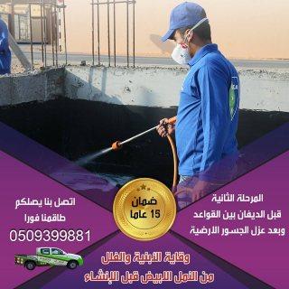شركة مكافحة حشرة الرمة | النقاء | دبي - 0509399881