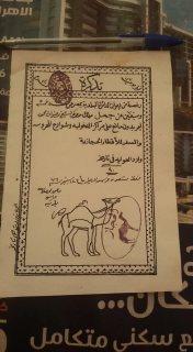 رخصه جمل نادره للسفر للحجاز