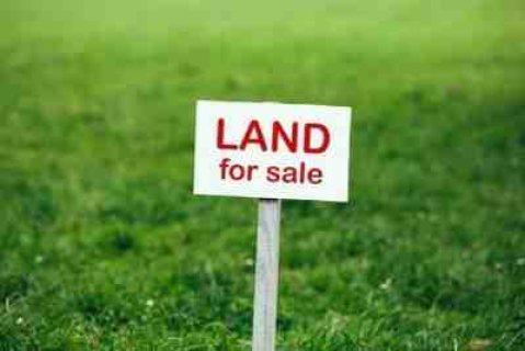 للبيع ارض سكنية منطقة الشامخة شارع رئيسي