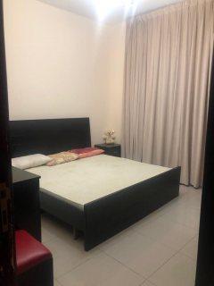 للايجار شقة مفروشة بالشارقة بالتعاون غرفة وصالة فرش جيد