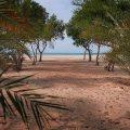 اراضي للبيع بمنطقة غنتوت علي اجمل سواحل الأمارات علي البحر مباشرة