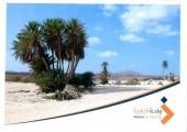 بيع أرض في مشروع واحة الزاويه