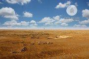للبيع أرض سكنية مميزة في مدينة شخبوط ,ابوظبي