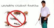 اقوى شركات مكافحة حشرات فى دبى 0566511084 الفردوس